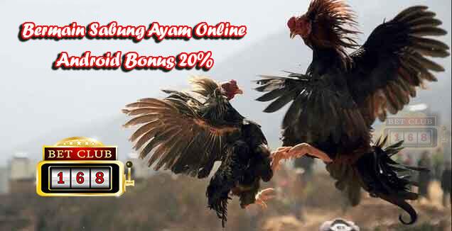 Sabung Ayam Online Android Bonus 20%